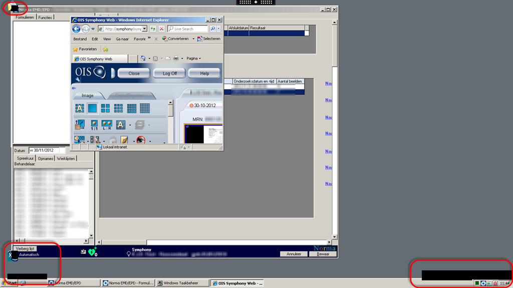 Application causes Screen Flickering in Citrix XenApp